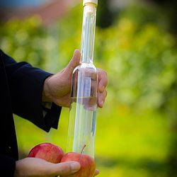 Flasche Schnaps mit Äpfel